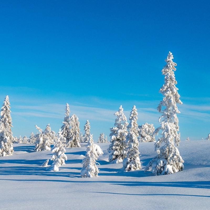 Vinter på Skrimfjell