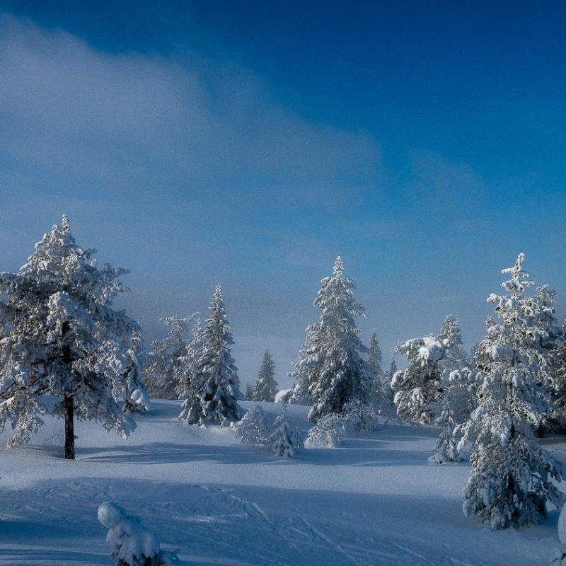 En kald dag på Skrimfjell