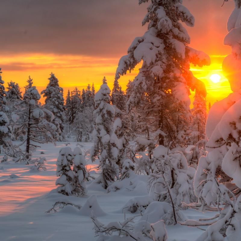 Skrimfjell vinter